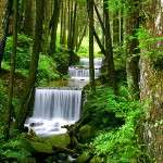 alishan waterfall